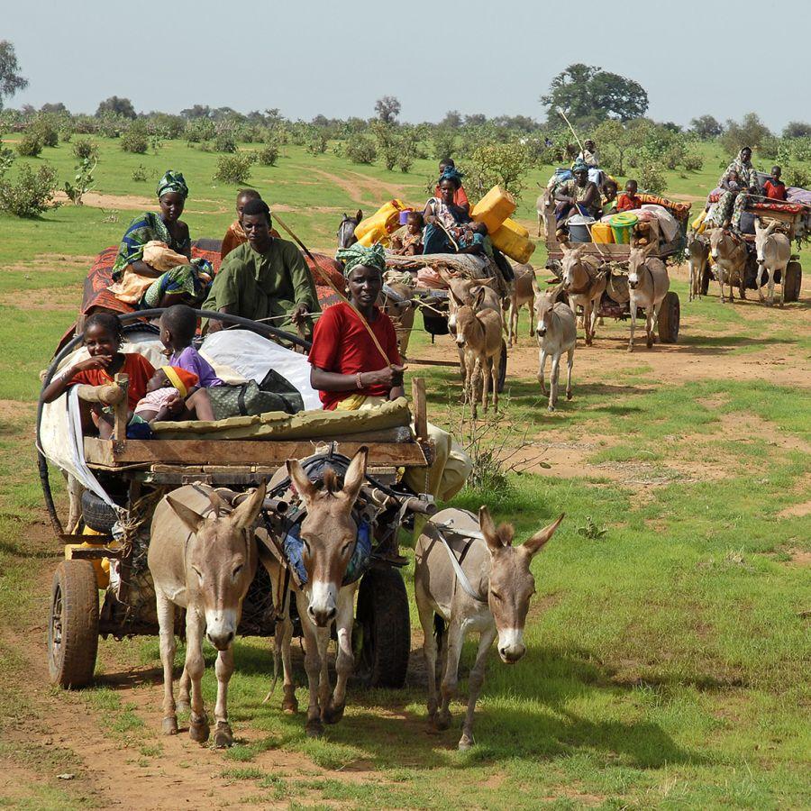 Le meilleur moment pour aller au Sénégal