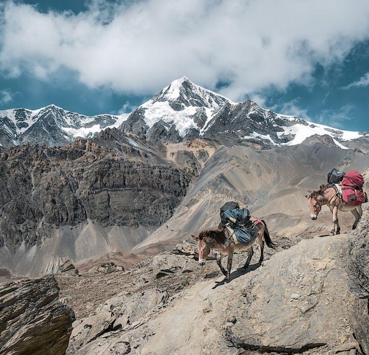 Les régions du nord de l'Himalaya