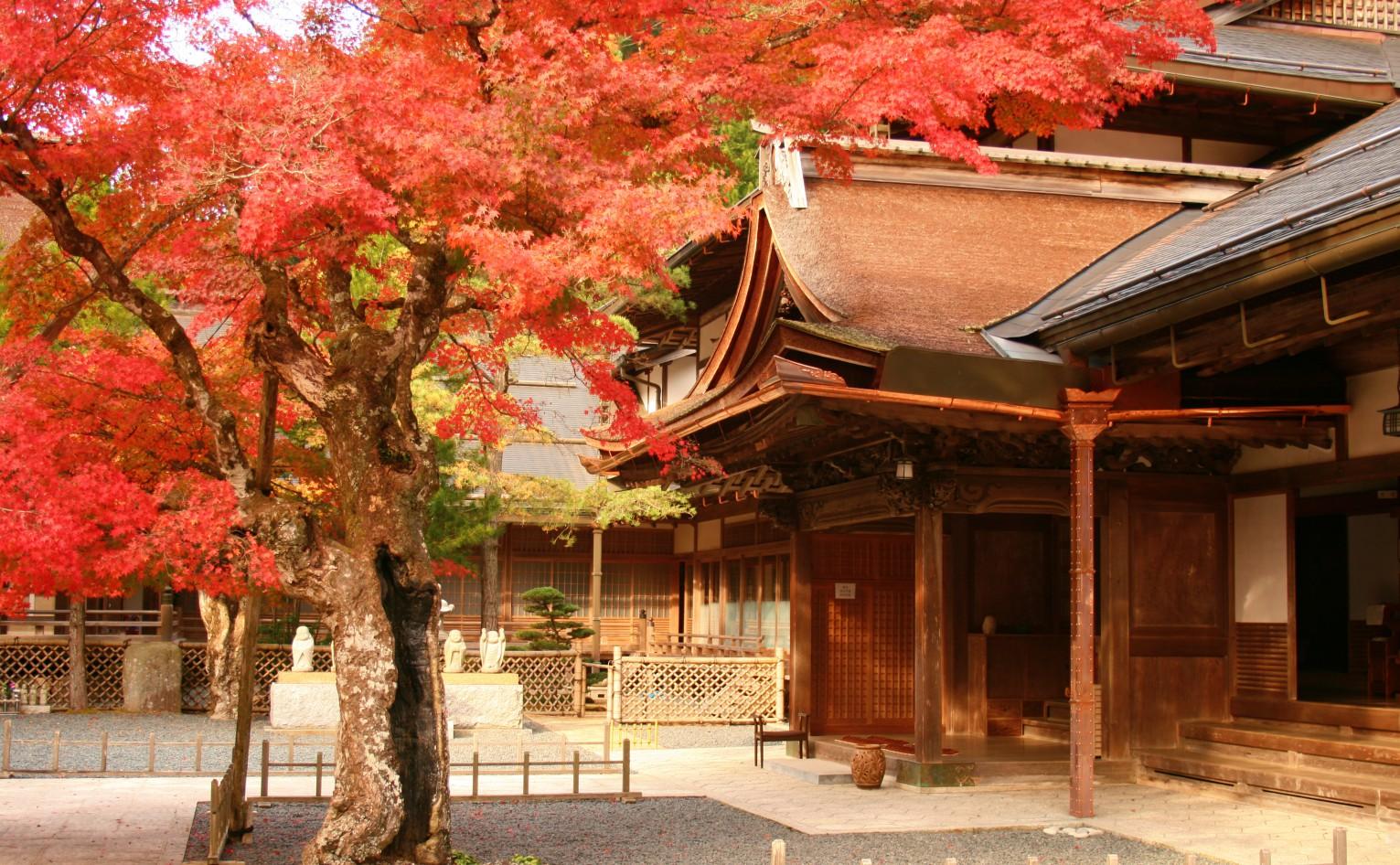 HIROSHIMA - KOYASAN